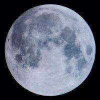 moon lunar gardening 200x200