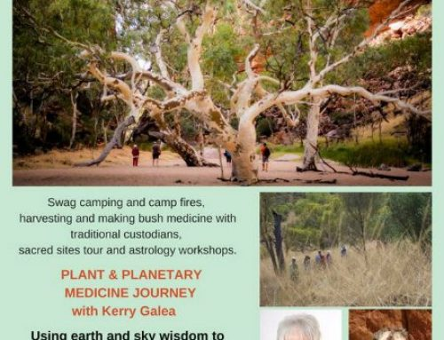 Plant and Planetary Medicine Journey